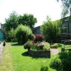 Picture of Wardie's Central Garden