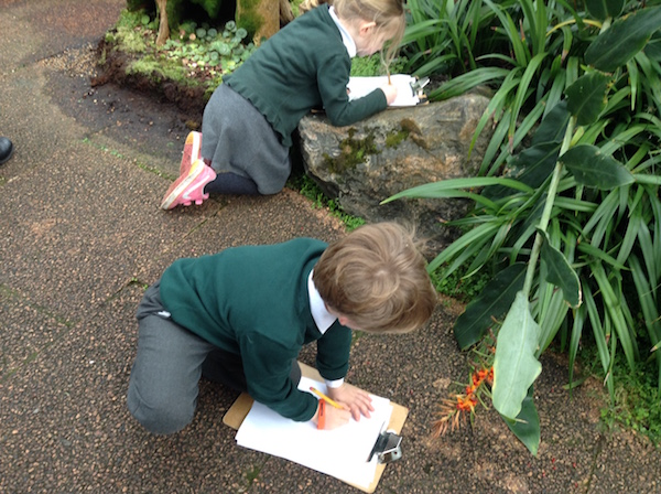 Pupils taking notes in the hothouse