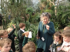 Pupils in the hothouse