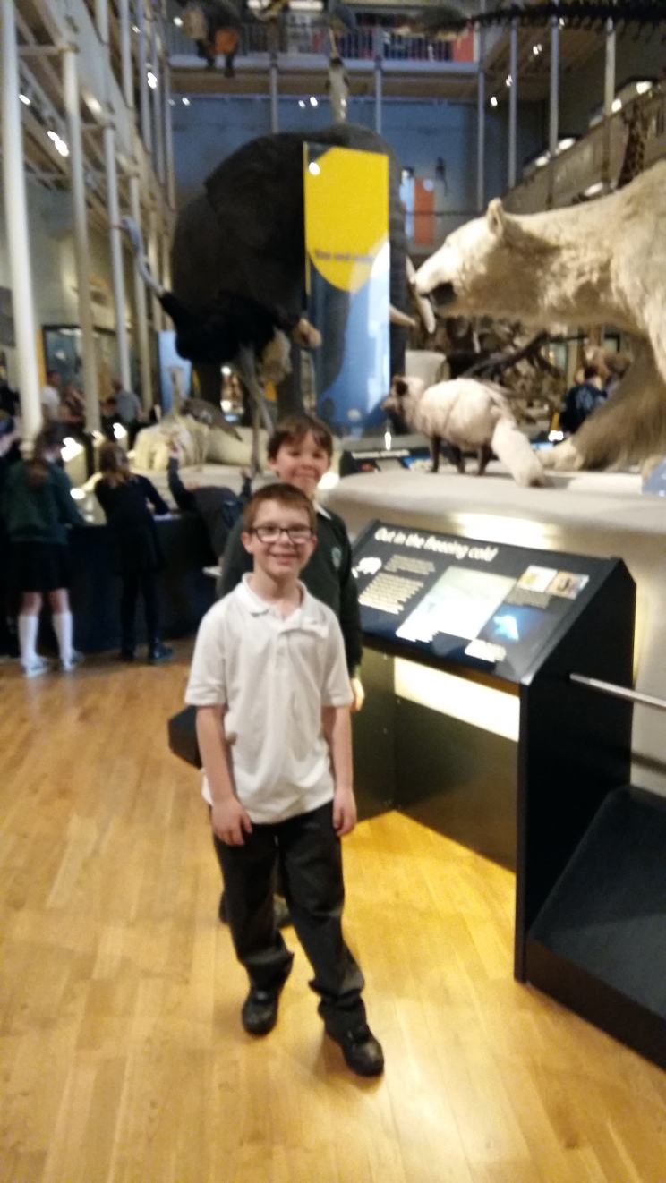 Pupils in the museum